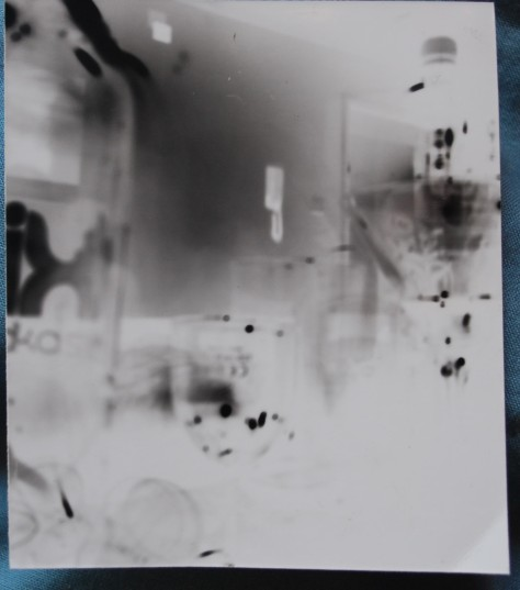 Paper negative, appear to be soft focus