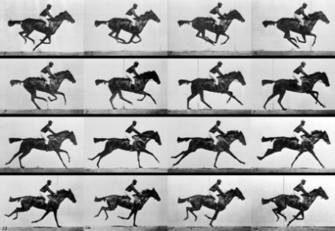 by Eadward Muybridge (click to see link)