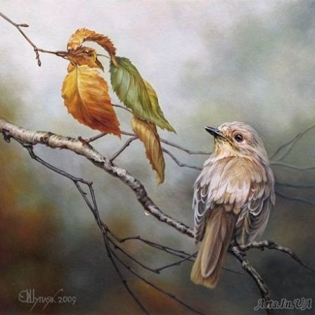 by Oleg Shuplyak ( click to see link)